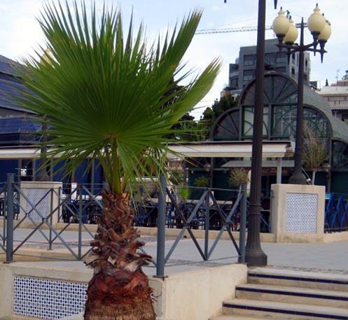 Cartagena quay
