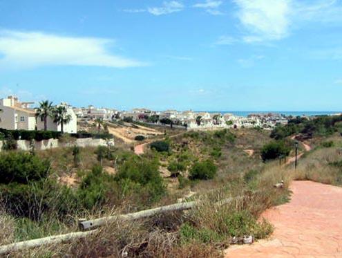 Playa Flamenca gorge